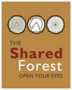 A Shared Forest