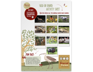 Activity Sheets 02 - Wild or owned?