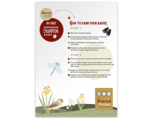 Activity Pack - How To Earn Your Badge