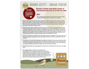 Woodland Structure Activity Part 1
