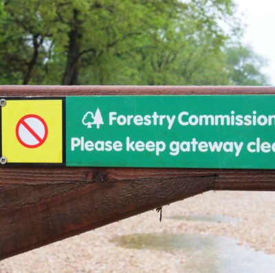 Re-Open New Forest car parks: Substantial harm being done